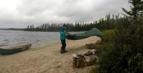 windy tarp.PNG